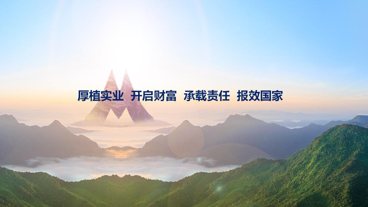 易龙天_新华联集团网站建设